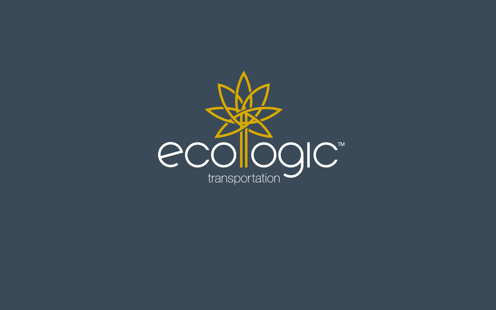 Ecologic Transportation Brand Identity
